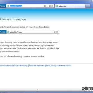 ie9 inPrivate