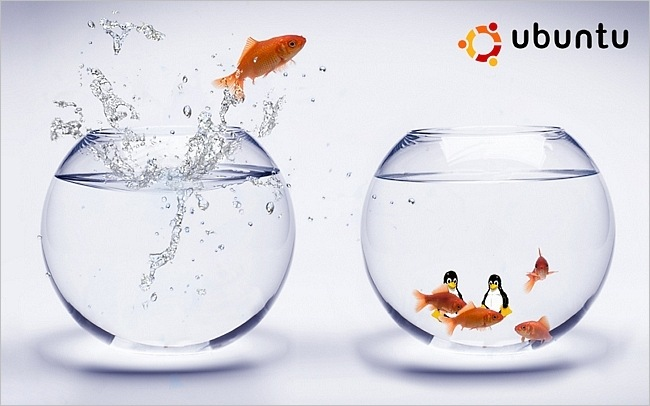 ubuntu-wallpaper-collection-series-2-01