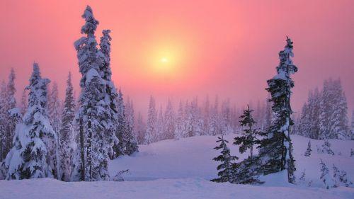 Sfondi per il nostro desktop ilweblog for Immagini per desktop inverno