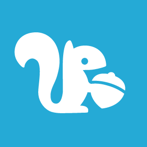 pokki-logo