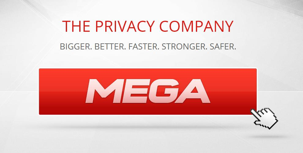 mega privacy company