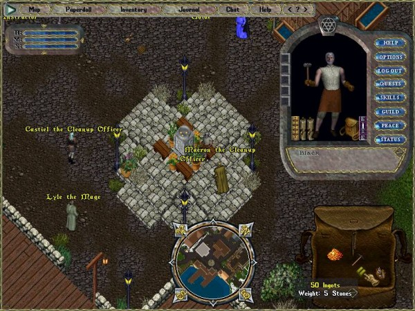 ultima online screen 3