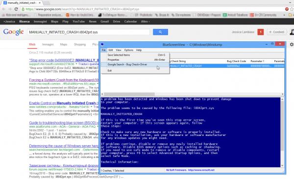 BlueScreenView - La ricerca dell'errore tramite Google
