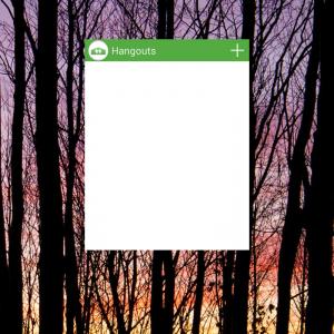 Hangouts Widget