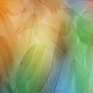 MIUI v6 porting Nexus5 1