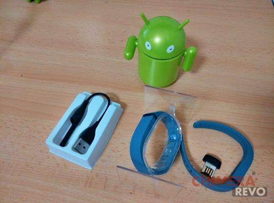 FitBit Flex foto1