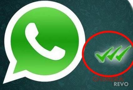 whatsapp tripla spunta