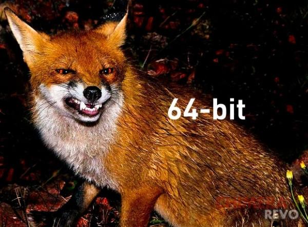 Firefox a 64 bit