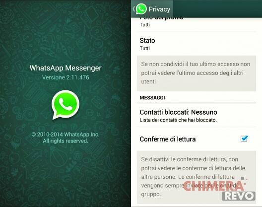 WhatsApp-conferma-lettura-stabile