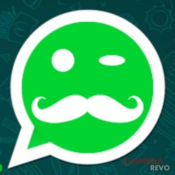 Whatsapp le funzioni da conoscere chimera revo - Er finestra android ...