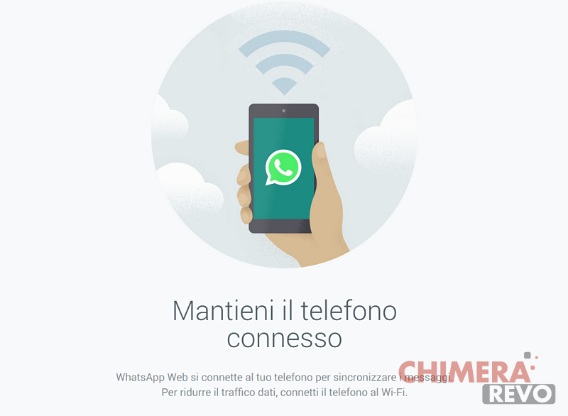 Whatsapp Web opt 1
