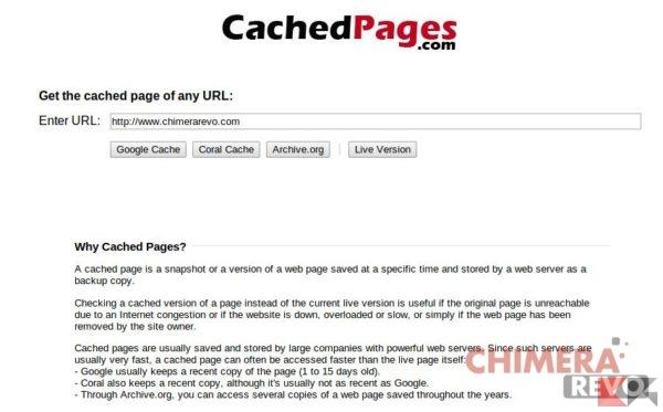 copia cache di un sito web - cachedpages