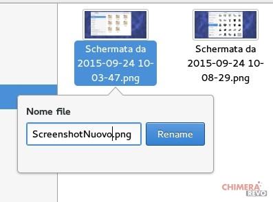 files-rinomina