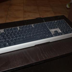IMG 4896