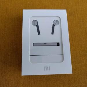 Xiaomi Hybrid Earphone 21