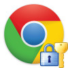 chrome security logo
