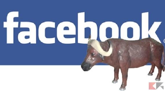 facebook-bufale
