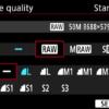 Canon RAW Format