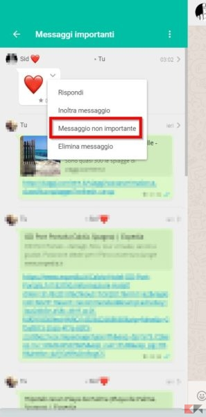 Messaggi importanti Whatsapp WhatsApp Web