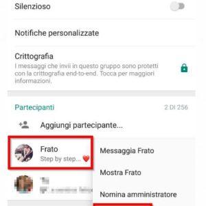 rimuovere contatto da gruppo Whatsapp
