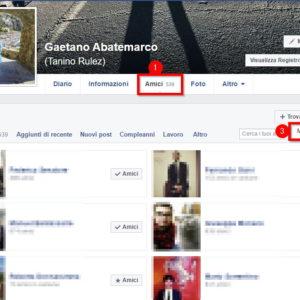 scoprire chi ci segue su Facebook