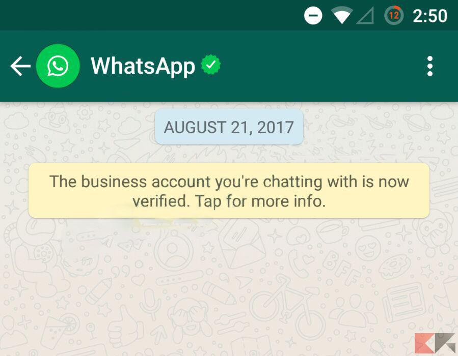 Spunte verdi WhatsApp: come funzionano - WhatsApp Business - account WhatsApp verificato