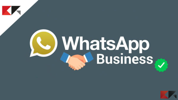 Spunte verdi WhatsApp: come funzionano - WhatsApp Business - account WhatsApp verificato