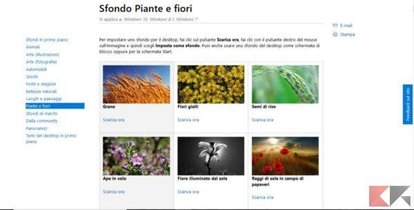 sfondi-desktop-windows-10-piante-fiori