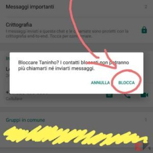 bloccare numeri sconosciuti WhatsApp