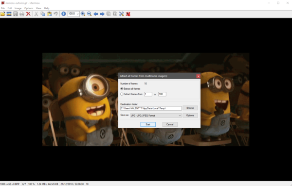 IrfanView GIF Exstract all frames