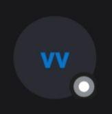 Icone di stato Skype: cosa significano e come capirle-Stato invisibile