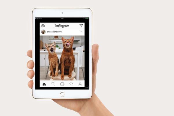 Scaricare video da Instagram su iPhone e iPad
