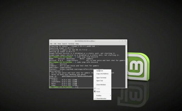 Come abilitare il supporto ai pacchetti Snap su Linux Mint