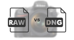 DNG vs RAW le differenze