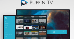 Migliori browser Android per TV Box e Fire TV Stick