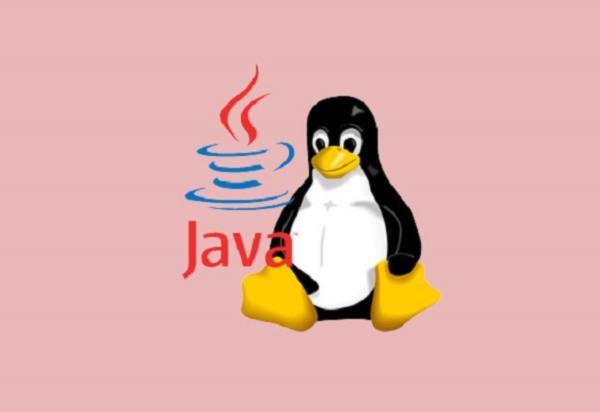 Come installare Java su Linux 1 1