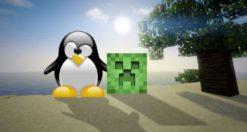 Come installare Minecraft su Linux