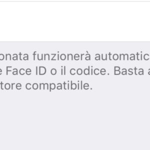 Come configurare una carta rapida trasporti su Apple Pay 2