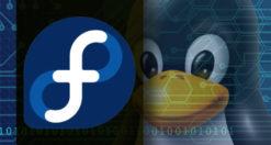 Come installare programmi su Fedora
