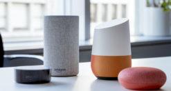 Google Home o Amazon Echo