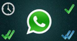 WhatsApp non si aggiorna: le soluzioni