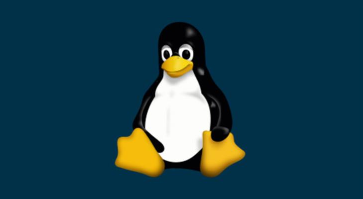 Come forzare spegnimento di Linux 1