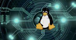 Come eseguire backup cronologia del terminale su Linux