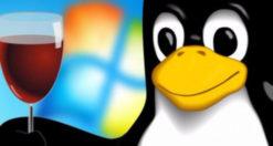 Come fare backup impostazioni Wine su Linux