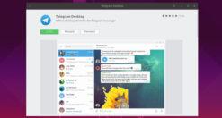 Come installare Telegram su Linux