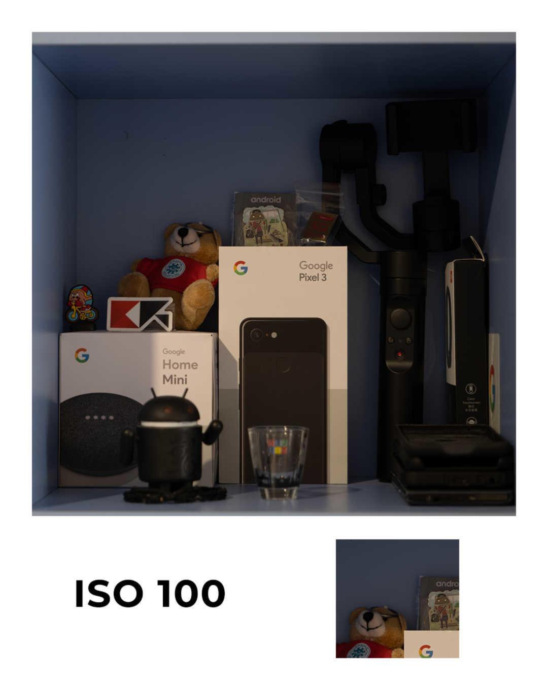 Panasonic Lumix S1 ISO100