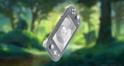 cover nintendo switch lite 2