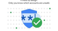 Come controllare la sicurezza delle password di un account Google