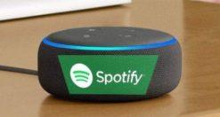 Come collegare Spotify ad Alexa