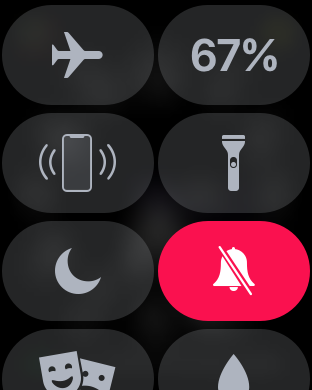 Come silenziare Apple Watch 1